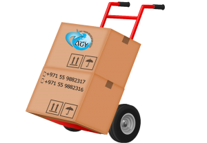Cargo and Freight Forwarding-movers and packers in dubai